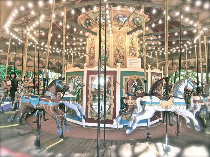 Magic Carousel ~ Perth Zoo