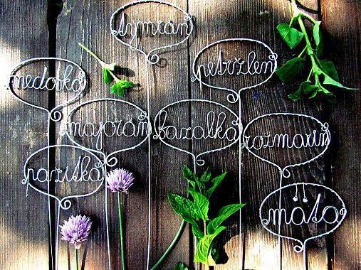 Záhradné bylinky by astra - SAShE.sk - Handmade Do kuchyne