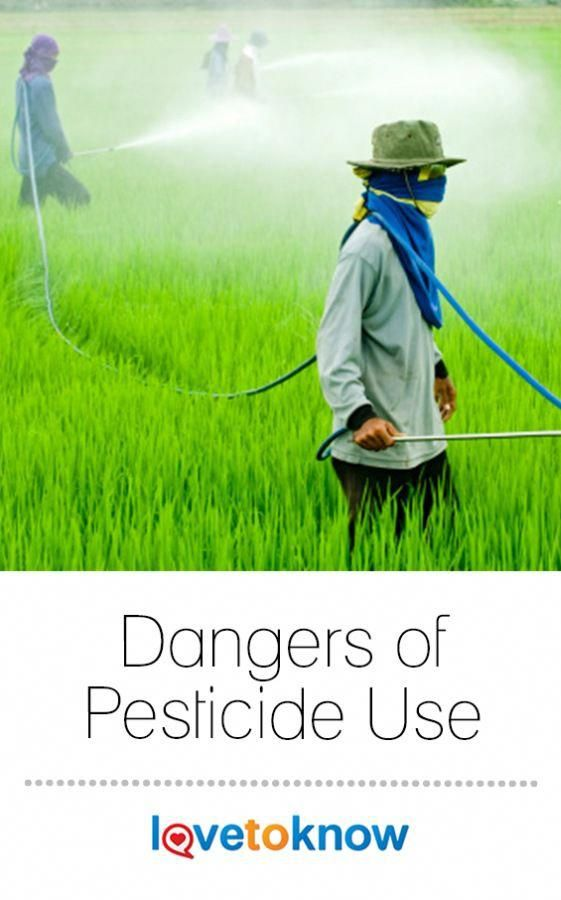 how are pesticides harmful to the environment