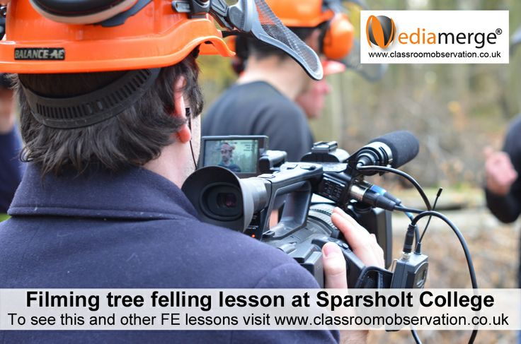 Tree felling lesson at Sparsholt College - see it at www.classroomobservation.co.uk