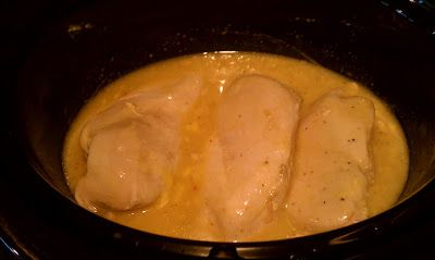 4 chicken breasts, cream of chicken soup, packet of Italian dressing mix, place in crockpot 8hrs. Good with rice!