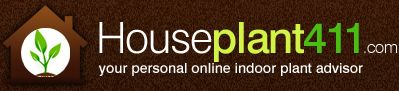 POPULAR HOUSE PLANTS - Click on any plant in our Popular House Plant guide & read about how to care for it.  From A to Z ~ via http://www.houseplant411.com/houseplant