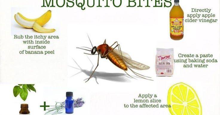 40 ways stop Mosquito Bite Itch