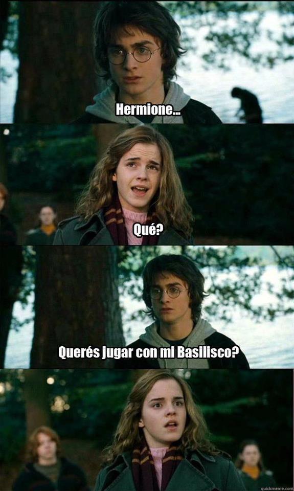 Memes De Harry Potter Para reirse Y Reflexionar - Taringa!