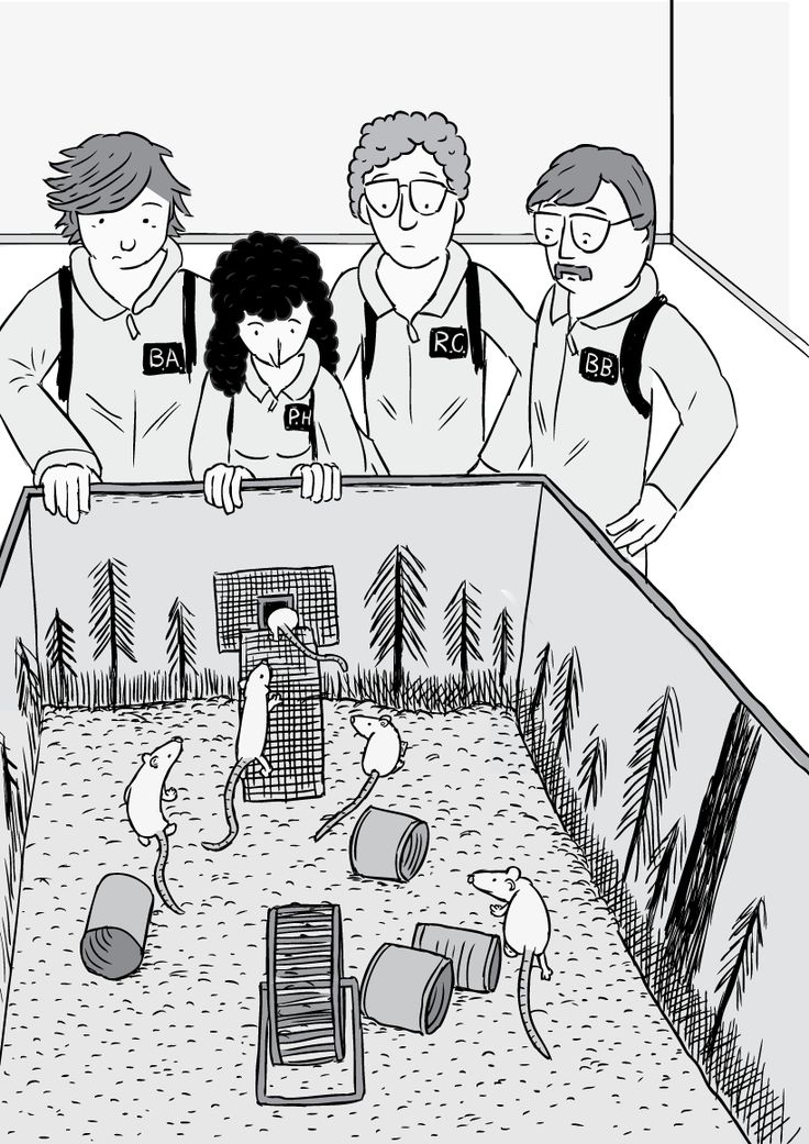 The Rat Park team look down to see their experiment subjects. The rats congregate around the feeding tunnel's ramp.  Image from Stuart McMillen's comic Rat Park.
