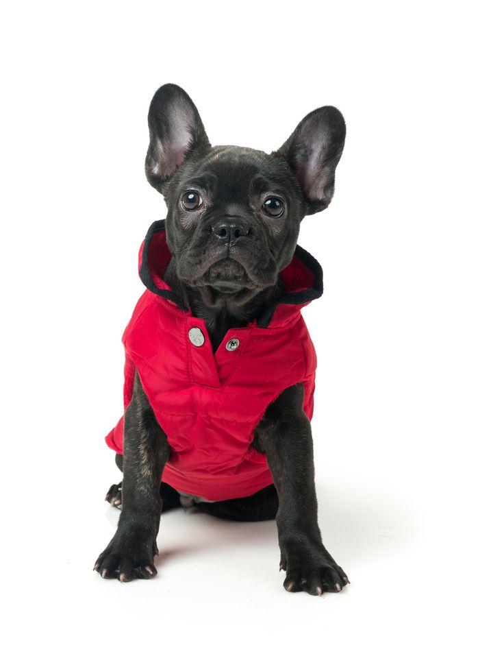 Red Sleeveless Jacket