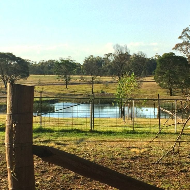 Canyonleigh cluster launch view of dam Southern Highlands NSW
