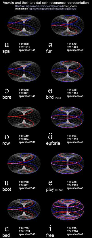 The physical similarity between human speech and toroidal physics is the creation of resonances in a harmonically rich environment. This predicts resonance peaks which could be verified using speech synthesis software, producing the vowels.