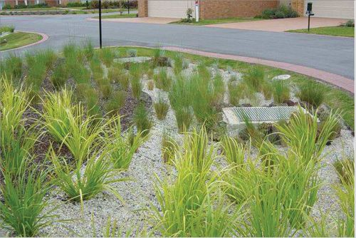 35 best images about bioretention curbs on pinterest for Landscape design courses adelaide