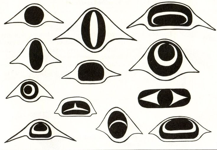 Appreciating Art: Pacific Northwest Coast Art--Haida Masks