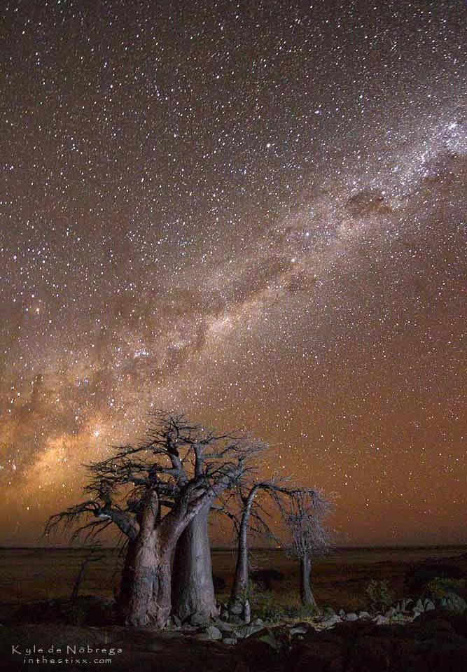 kubu island and a trillion stars