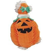 Pumpkin Pooch Dog Halloween Costume  Price €18.99 [£16.52]