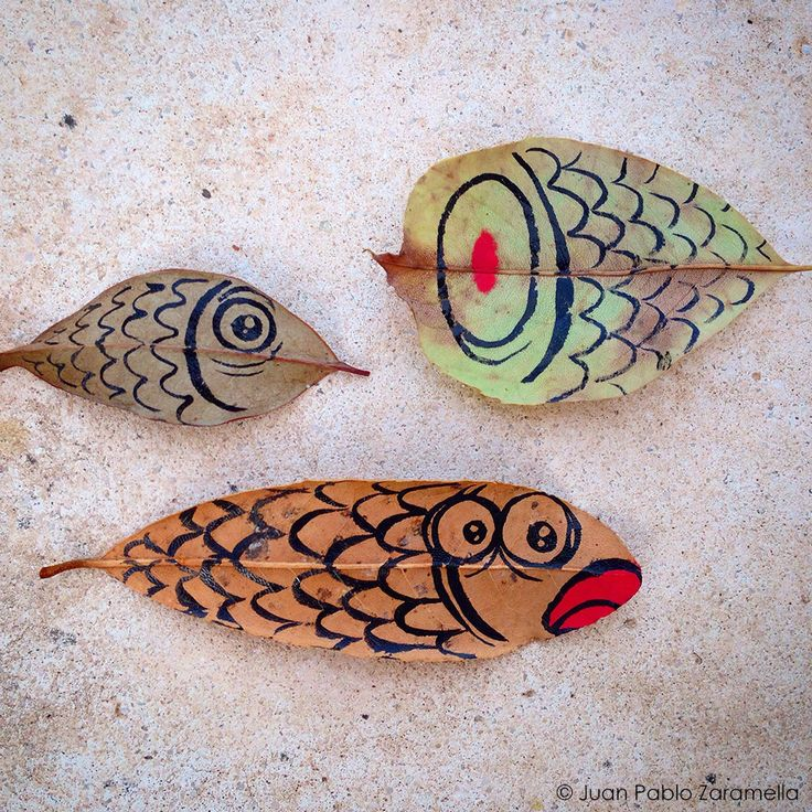 Fish. Ink on leaves