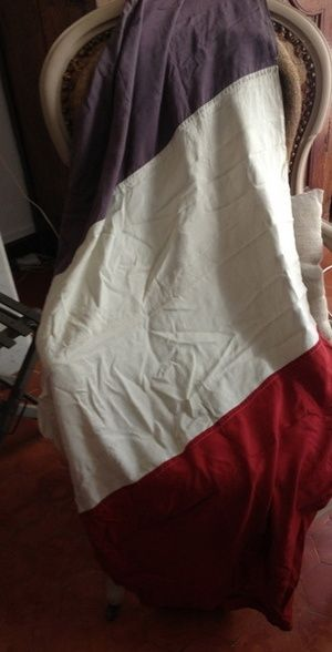 Beautiful old French flag