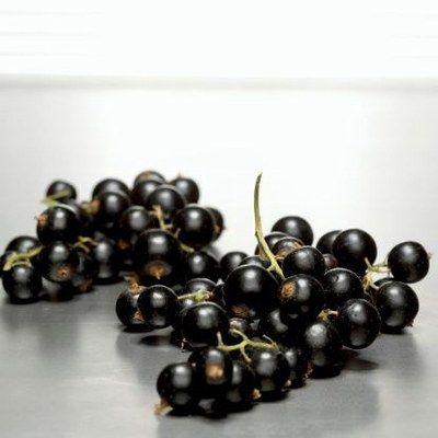 Nalewka z czarnej porzeczki z liśćmi na spirytusie © Thinkstock - Nalewka z czarnej porzeczki na spirytusie TRADYCYJNA RECEPTURA