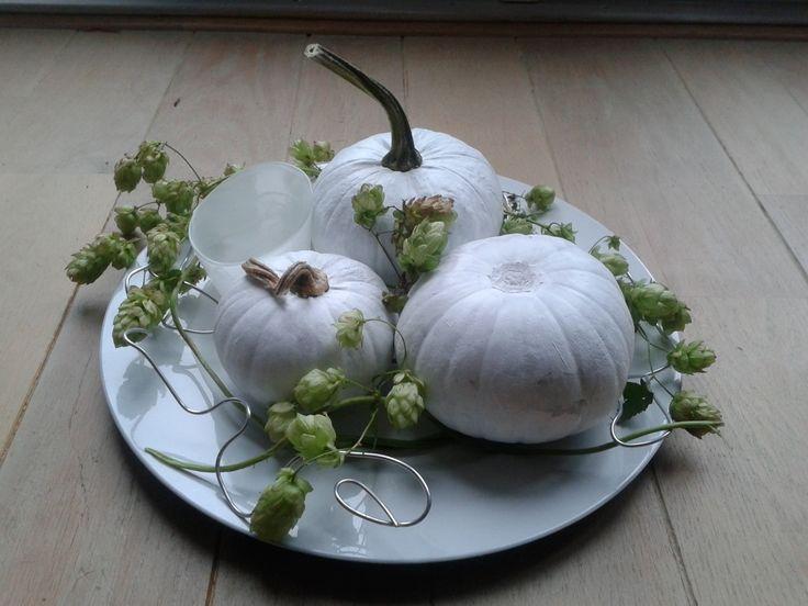 Wit geverfde pompoenen met hop op een dienblad voor mariska halloween 2016 pinterest green - Geschilderd zink ...