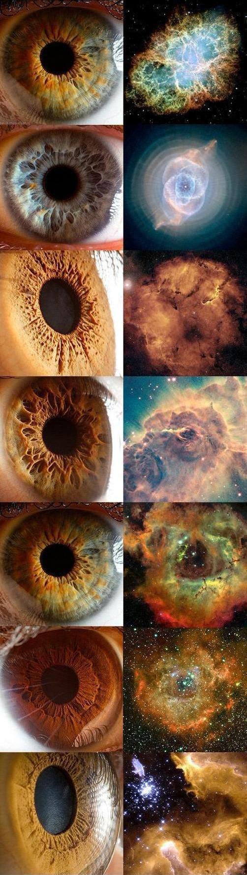 كثيراً ما يشبِّه علماء الفلك السُدم السماوية بالعيون، بل حتى أن بعضها يحمل اسم العين.    ونضع هنا مقارنة للشبه بين بعض السدم وقزحية العين.      وتحسب أنك جرم صغير.. وفيك انطوى العالم الأكبر