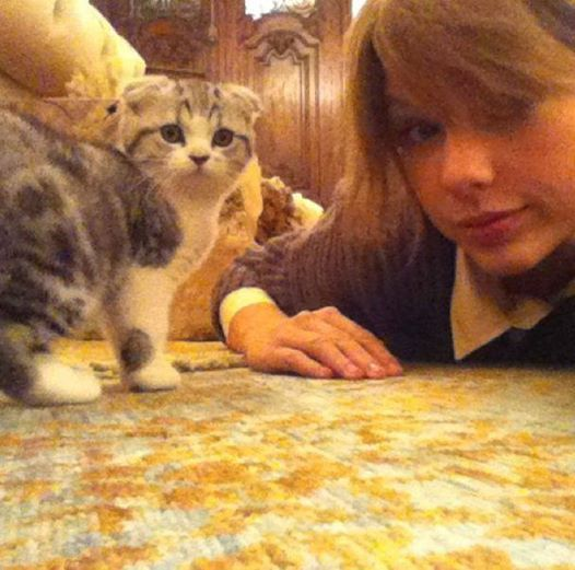 Taylor Swift et son chat Meredith ^^