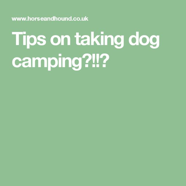 Tips on taking dog camping?!!?