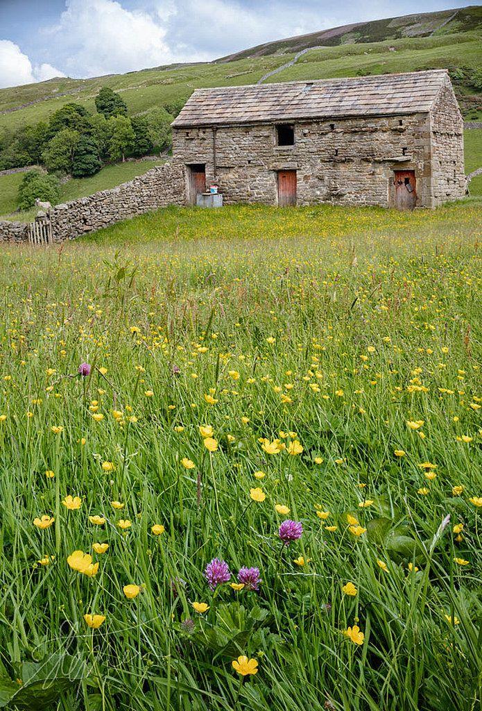 "wanderthewood: ""Swaledale, Yorkshire Dales, England by Pixelda """