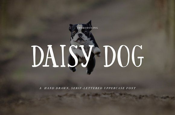 Hand Written Font: Daisy Dog by Holly McCaig Creative on @creativemarket #partnerlink