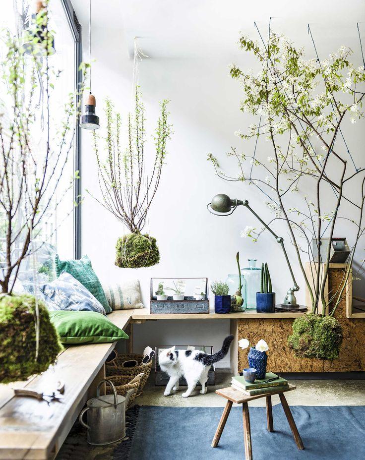 Kunstzinnig! Deze interieurstylisten namen het woord 'hangplant' wel erg letterlijk. ;)