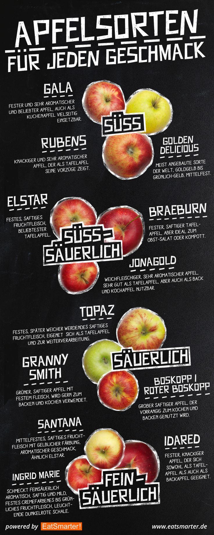 Alte Apfelsorten, die es auch heute noch gibt – Katrin M.