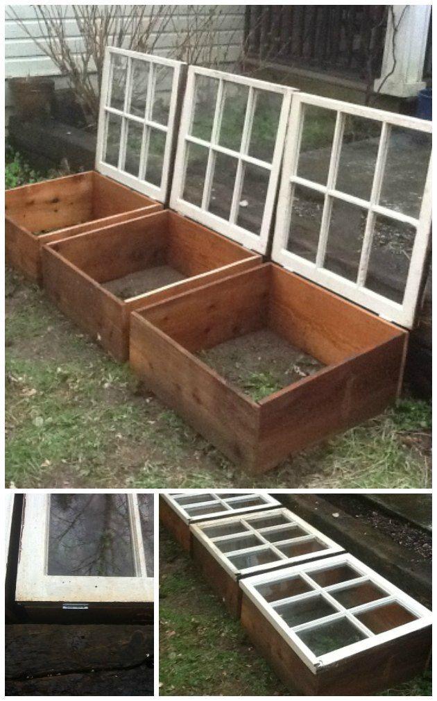 højbede med glas og minidrivhuse af gamle vinduer genbrug