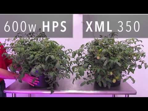 XML 350 LED Grow Light vs. 600w HPS Grow Light - YouTube