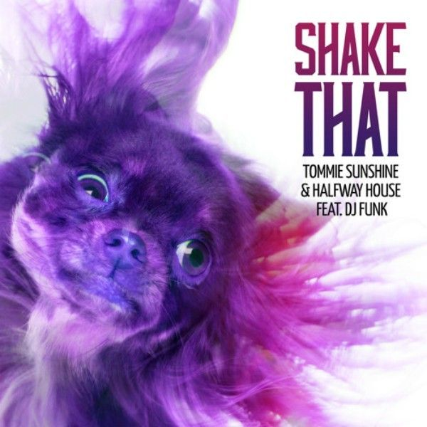 Tommie Sunshine & Halfway House feat. DJ Funk - Shake That (Atica Remix) http://www.demagaga.com/2015/11/17/tommie-sunshine-halfway-house-feat-dj-funk-shake-that-atica-remix/