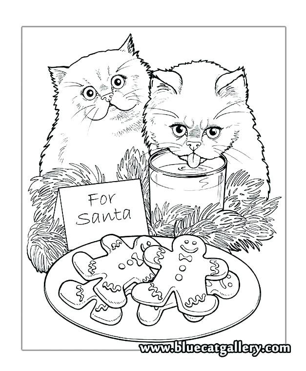 Image Result For Christmas Coloring Pages For Adults Cat Coloring Books Cat Coloring Page Christmas Coloring Pages