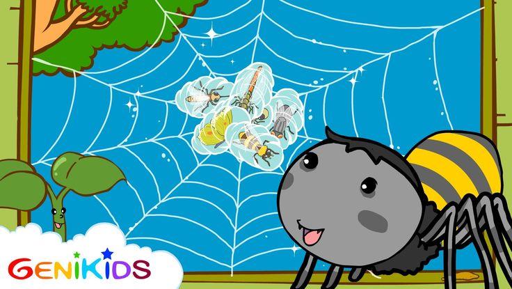 Film: La toile d'araignée - Dessin animé éducatif Genikids