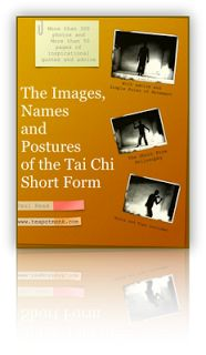Free PDF Tai Chi Photo Book  - 300 photos of Chneg Man Ching (sorta) form - free subscribe to blog