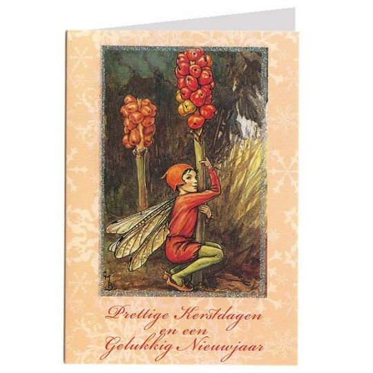 "The Lords-and-Ladies Fairy Flower Fairy  Christmas Card Glittered Border Greeting in Dutch ""Prettige Kerstdagen en een Gelukkig Nieuwjaar""  Merry Christmas and a Happy New Year  Import from Holland"