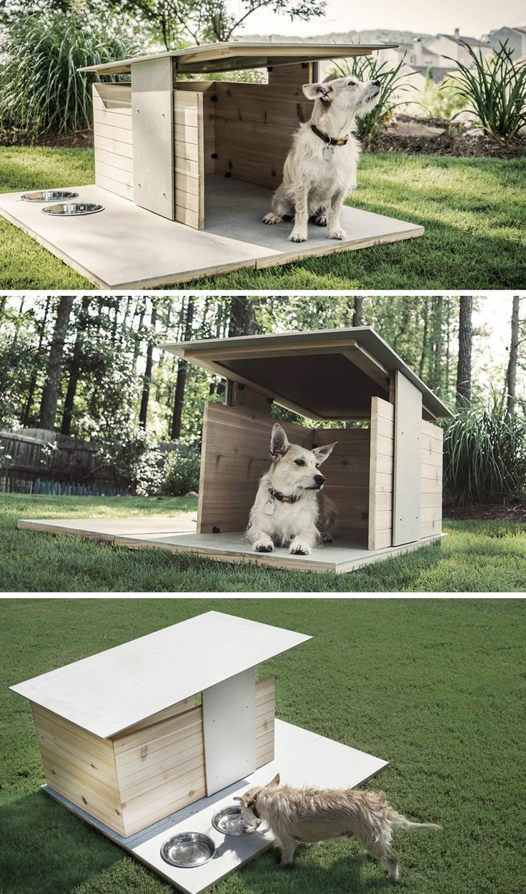 Two atlanta based designers create an architecturally for Architecture and design dog house