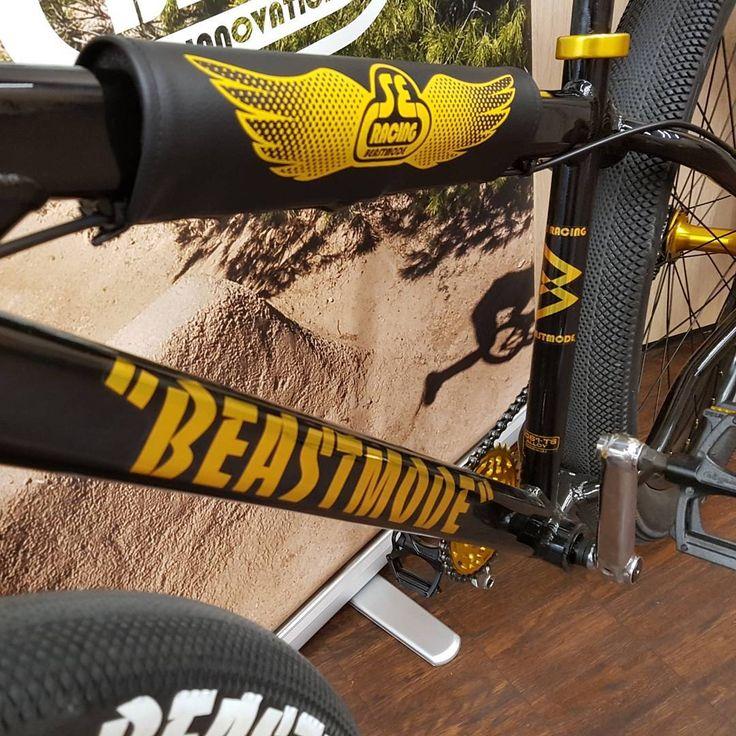 10 best BMX racing images on Pinterest | Bmx racing, Bicycles and ...