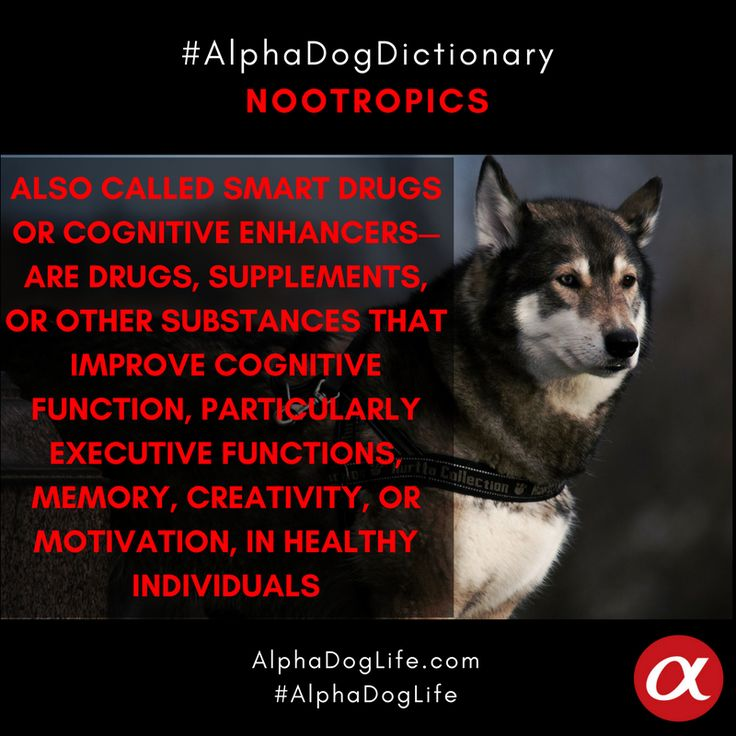 Our #WordOfTheDay is #Nootropics: Nootropics (pronunciation: /noʊ.əˈtrɒpᵻks/ noh-ə-TROP-iks)—also called smart drugs or cognitive enhancers—are drugs, supplements, or other substances that improve cognitive function, particularly executive functions, memory, creativity, or motivation, in healthy individuals. #alphadoglife