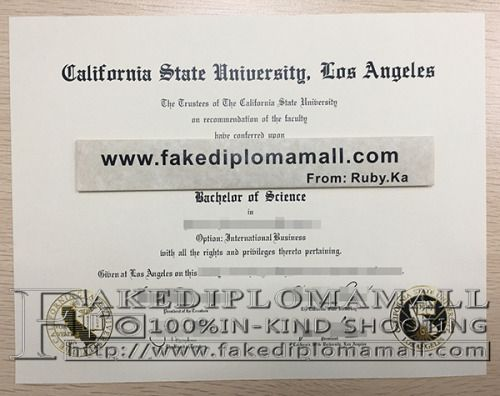 10 best US university degree samples images on Pinterest Php - sample graduation certificate