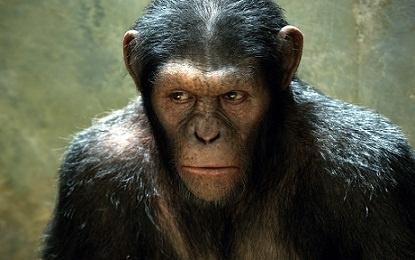 Planeta dos Macacos: A Origem (Rise of the Planet of the Apes)  Dir.: Rupert Wyatt - 2011