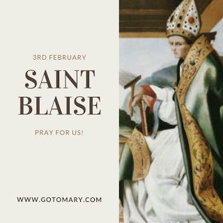 The 3rd of February is the Feast day of Saint Blaise, also known as Saint Blase. He is the patron saint of animals, builders, drapers, choking, veterinarians, throats, infants, Maratea, Italy, Sicily, Dalmatia, Dubrovnik, Ciudad del Este, Paraguay, Rubiera, stonecutters, carvers, and wool workers. #saint #saints #saintoftheday #catholic #catholicsaint #catholicsaints