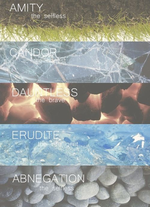 divergent factions amity candor dauntless erudite