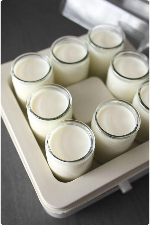 Tout sur les yaourts maison et le choix d'une yaourtière | chefNini