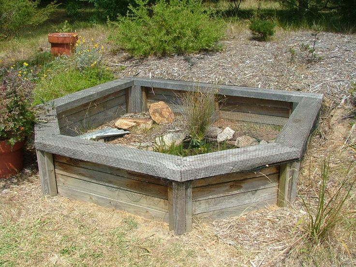 How to design a turtle terrarium homemade turtles pond for Homemade pond ideas