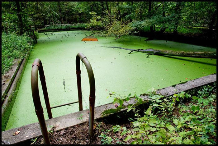 1000 Images About Abandoned Kentucky On Pinterest Devil Versailles And Kentucky
