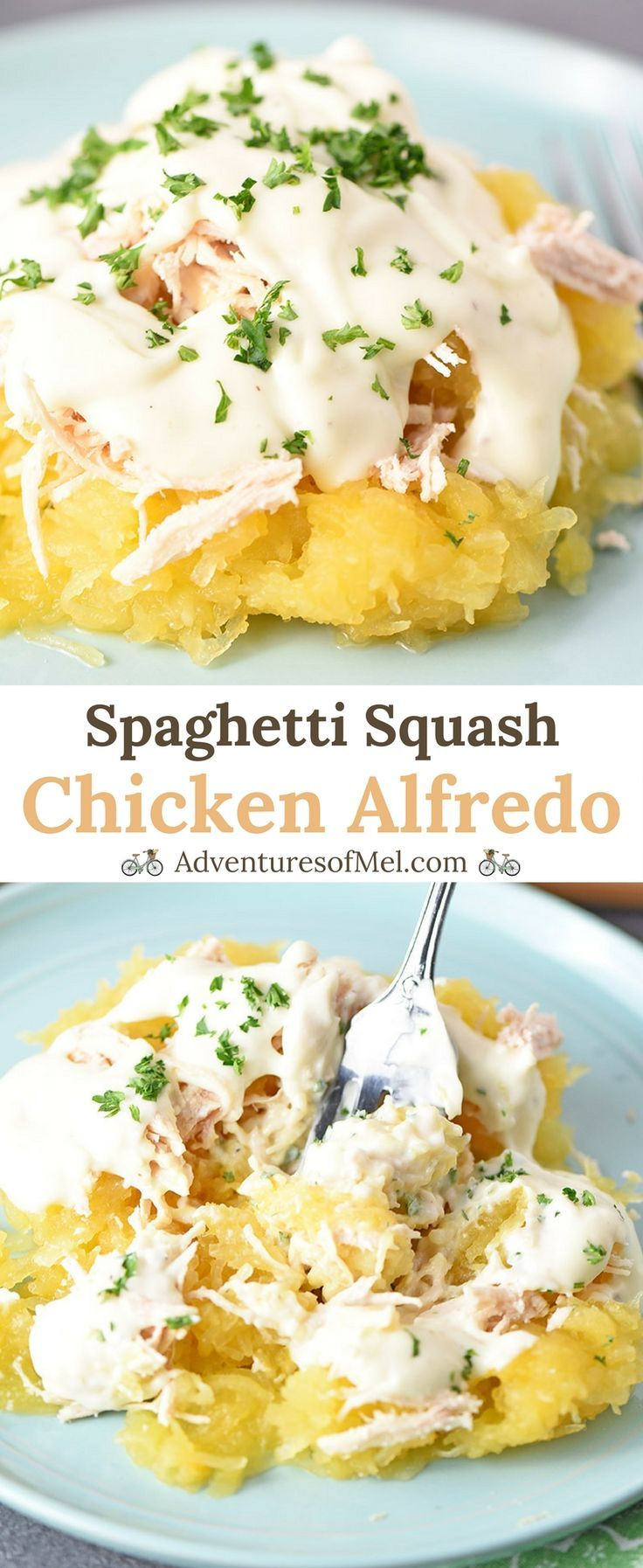 Spaghetti Squash Chicken Alfredo, made with shredded chicken and an easy homemade alfredo sauce, is a healthy recipe for dinner. So creamy and delicious! #chickenalfredo #chicken #spaghettisquash #dinner #dinnerrecipes #pasta #alfredo #chickenrecipes