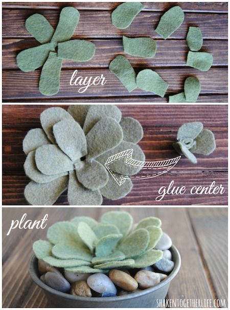How to Make Paper and Felt Succulents » Curbly | DIY Design Community