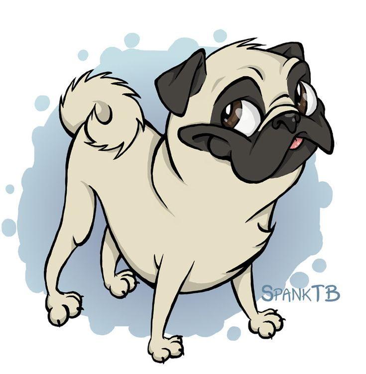 how to draw a cartoon pug pug drawings the pug by spanktb cartoons comics digital 9005