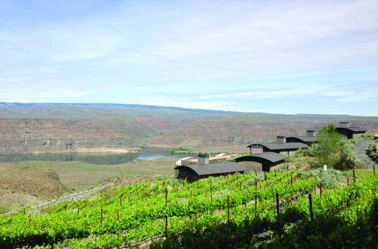 Cave B Estate Winery and its vineyards sit atop basalt cliffs overlooking the Columbia River near the town of George. The winery is adjacent to the Gorge Amphitheatre, originally owned by Cave B owners Vince and Carol Bryan. (Andy Perdue)