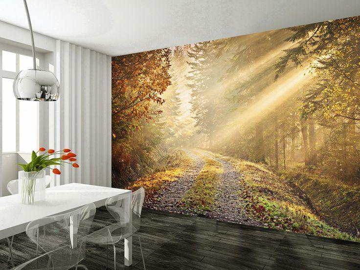 Estrenamos nueva marca de fotomurales en nuestra tienda for Autumn forest mural