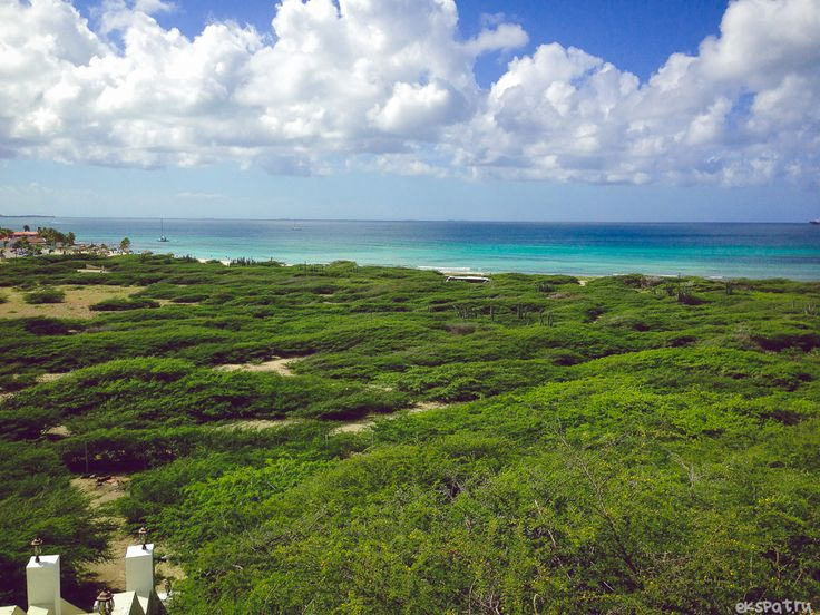 Aruba landscape / путешествия аруба travel blog http://ekspat.ru/